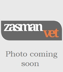 Zasman vet in Hampstead NW3, Crouch End N8, Stroud Green N4, Islington N1, Stoke Newington N16